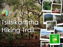 tsitsikamma hiking trail